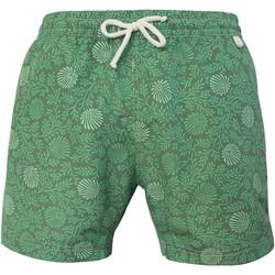 Vêtements Homme Maillots / Shorts de bain Les Loulous De La Plage Short de bain homme MONTAUK Fougère Vert