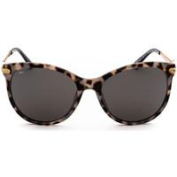 Montres & Bijoux Lunettes de soleil Sunxy Chale Noir