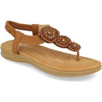 Chaussures Femme Sandales et Nu-pieds H&d YZ19-319 Camel