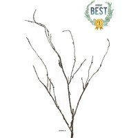 Maison & Déco Plantes artificielles Artificielles Branche de bois artificielle, 3 ramures, H 95 cm - BEST