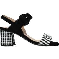 Chaussures Femme Sandales et Nu-pieds Carmens Padova 45107 Noir