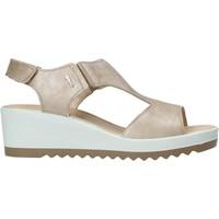 Chaussures Femme Sandales et Nu-pieds IgI&CO 7163100 Beige
