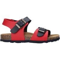 Chaussures Enfant Sandales et Nu-pieds Bionatura 22B 1002 Bleu