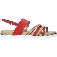 Chaussures Femme Secret De Gourme Alviero Martini E087 422A Rouge