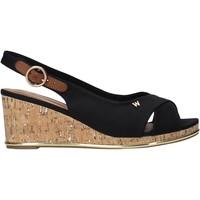 Chaussures Femme Sandales et Nu-pieds Wrangler WL11653A Noir