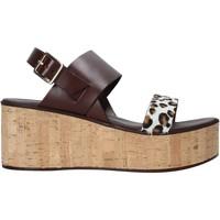 Chaussures Femme Sandales et Nu-pieds Café Noir XV1302 Marron
