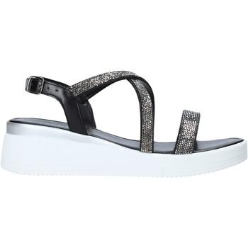 Chaussures Femme Sandales et Nu-pieds Café Noir XL9161 Noir