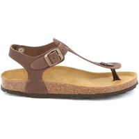 Chaussures Femme Sandales et Nu-pieds Grunland SB0001 Marron