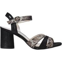 Chaussures Femme Sandales et Nu-pieds Valleverde 28270 Noir