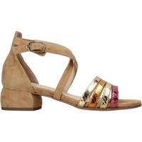 Chaussures Femme Sandales et Nu-pieds Carmens Padova 45060 Marron