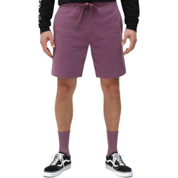 Vêtements Homme Shorts / Bermudas Dickies DK0A4XAYB651 Violet