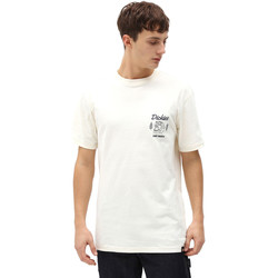 Vêtements Homme T-shirts manches courtes Dickies DK0A4X9NECR1 Blanc
