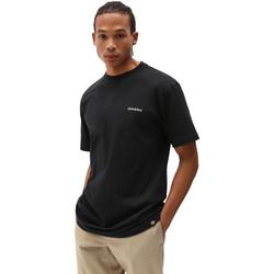 Vêtements Homme T-shirts manches courtes Dickies DK0A4X9OBLK1 Noir