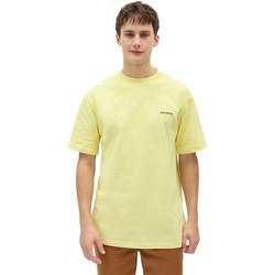 Vêtements Homme T-shirts manches courtes Dickies DK0A4X9OB541 Jaune