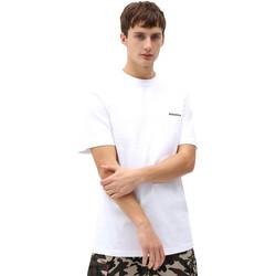 Vêtements Homme T-shirts manches courtes Dickies DK0A4X9OWHX1 Blanc
