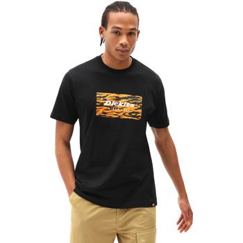 Vêtements Homme T-shirts manches courtes Dickies DK0A4X9JBLK1 Noir