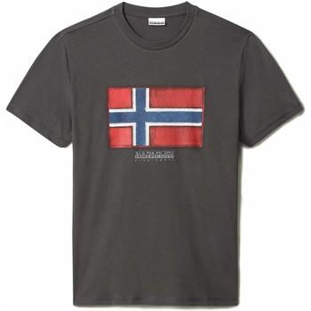 Vêtements Homme T-shirts manches courtes Napapijri NP0A4F9R Gris