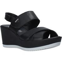 Chaussures Femme Sandales et Nu-pieds IgI&CO 5179500 Noir