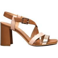 Chaussures Femme Sandales et Nu-pieds NeroGiardini E012563D Marron