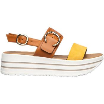 Chaussures Femme Sandales et Nu-pieds NeroGiardini E115711D Jaune