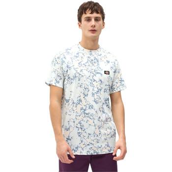 Vêtements Homme T-shirts manches courtes Dickies DK0A4X9PB551 Bleu
