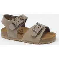 Chaussures Femme Sandales et Nu-pieds Plakton PLAKTON KIDS PIXEL TAUPE Marron