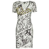 Vêtements Femme Robes courtes Desigual WILD Multicolore