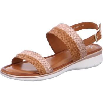 Chaussures Femme Sandales et Nu-pieds Ara Sandale Cuir Kreta Noir