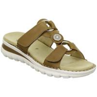 Chaussures Femme Sandales et Nu-pieds Ara Mule tampa 47210 Marron