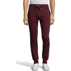 Vêtements Homme Pantalons de survêtement Cerruti 1881 Matera Bordeaux