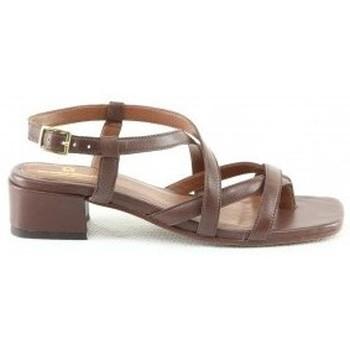 Chaussures Femme Sandales et Nu-pieds Manoukian Sandales Sana Marron