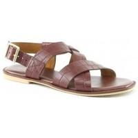 Chaussures Femme Sandales et Nu-pieds Manoukian Sandales Savannah Marron