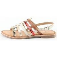 Chaussures Femme Sandales et Nu-pieds Manoukian Sandales Urielle Beige
