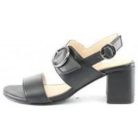 Chaussures Femme Sandales et Nu-pieds Manoukian Sandales Sabrina Noir