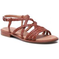 Chaussures Femme Sandales et Nu-pieds Caprice 28102-303 Cognac