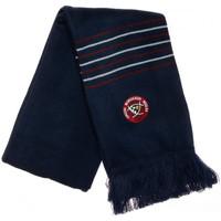 Accessoires textile Homme Echarpes / Etoles / Foulards Canterbury E30AC05 Bleu
