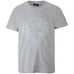 Vêtements T-shirts manches courtes Ed Hardy Tiger glow t-shirt mid-grey Gris