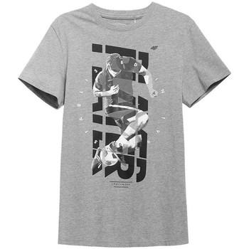Vêtements Homme T-shirts manches courtes 4F TSM011 Gris