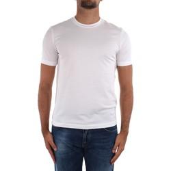 Vêtements Homme T-shirts manches courtes Cruciani CUJOSB G30 blanche