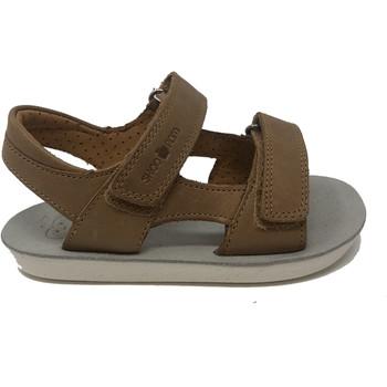 Chaussures Garçon Sandales et Nu-pieds Shoo Pom CHAUSSURES  GOA BOY Camel