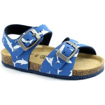 Chaussures Enfant Sandales et Nu-pieds Grunland GRU-RRR-SB1693-AM Azzurro