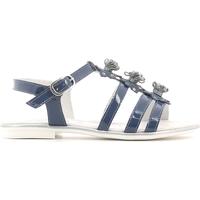 Chaussures Fille Sandales et Nu-pieds NeroGiardini P631370F Bleu