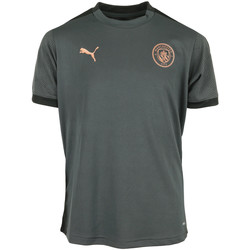 Vêtements Garçon T-shirts manches courtes Puma MCFC Training Jersey Kids gris