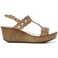 Chaussures Femme Sandales et Nu-pieds 24 Hrs 24 Hrs mod.21065 Autres