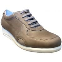 Chaussures Femme Baskets basses Softflex Chaussure lacet cuir Gris