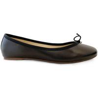 Chaussures Femme Ballerines / babies Ballerette COLONNA029-008-050 Noires