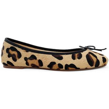 Chaussures Femme Ballerines / babies Ballerette COLONNA026-004-132 Marrons
