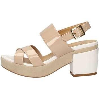 Chaussures Femme Sandales et Nu-pieds Bottega Lotti 9981 NU