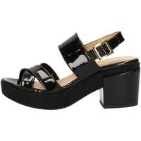 Chaussures Femme Sandales et Nu-pieds Bottega Lotti 9981 NOIR
