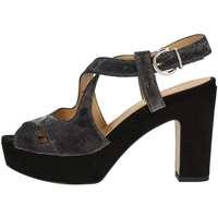 Chaussures Femme Sandales et Nu-pieds Bottega Lotti 1701 NOIR